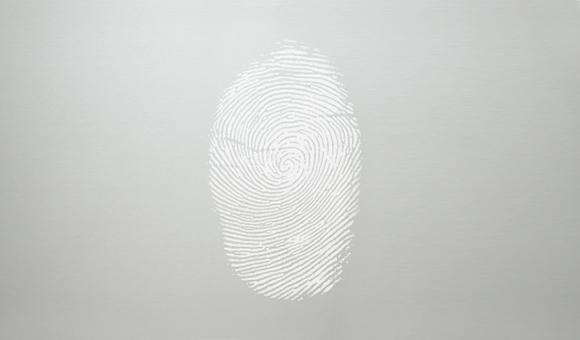 Fingerprint resistant stainless steel